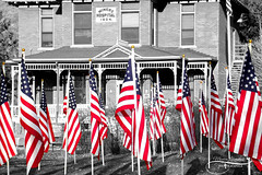 American Flags-2 (Monica Liberatore) Tags: jacksonholewyoming