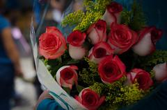 flores de graduación (rosatifamadelrio) Tags: fave30