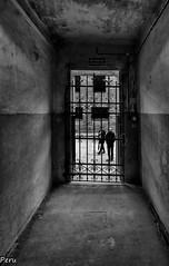 Encerrado. Explore 23 Julio (Perurena) Tags: carcel jail calabozo encerrado barrotes rejas prisionero libertad campodeconcentracion nazis auswitch polonia
