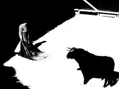 Sbastien Castella (aficion2012) Tags: arles garcigrande toros bull fight corrida francia france sebastien castella bw monochrome duotone torero matador toreador 2016