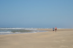 North Sea (-Kj.) Tags: dunes dunearea sand castricum northholland hike naturalreserve summer beach northsea