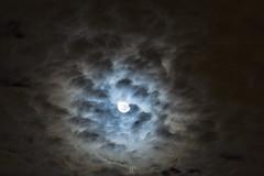 LA LLEGADA (Jhonny Peralta) Tags: luna moom paisa fotografia canon5d manfrotto lightroom 70200mm canon photography