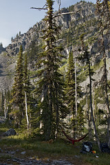 Summer's Respite (s_jenkV2) Tags: mission mountains mountain range montana swan seeley valley approach piper basin lakes ducharne summer season 2016 backpack trip hiking explore adventure forest nature wild wilderness huckleberry bush camp camping fire campfire canon 70d