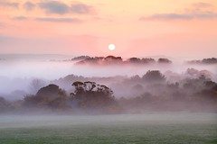 Autumn Mists (Tony Armstrong-Sly) Tags: cornwall godolphin autumnmists autumnmist mist earlymorningmist sunrise dawn landscape sky nature autumn