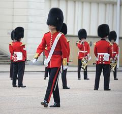 Img555071nx2_conv (veryamateurish) Tags: unitedkingdom british military army london wellingtonbarracks changingoftheguard publicduties ceremonial guardmounting newguard footguards householddivision grenadierguards