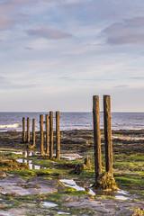 Sunkissed St. Mary's Staithes (mrktulip) Tags: seascape landscape nikon northumberland coastal northeast stmarys d800 seatonsluice leendgrads