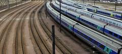 Depot SNCF - Rail Depot, Charenton, France (blafond) Tags: paris france tracks rail rails depot iledefrance tgv highspeed sncf charenton