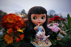 Blythe A Day 1 April 2015 - Spring is in the air