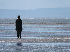 DSCF0670 (SierPinskiA) Tags: sea shells beach liverpool sand ironman pools barnacles ironwork mayday seashore merseyside anthonygormley irishsea 2016 anotherplace crosbybeach blundellsands fujixs1