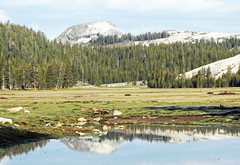 Fairview Dome Reflection, Tuolumne Meadows, Yosemite 2015 (inkknife_2000 (6.5 million views +)) Tags: california usa snow mountains creek forest reflections landscapes spring rocks meadow granite skyandclouds yosemitenationalpark highcountry waterreflections yosemitehighcountry easternsierranevada snowonmountains tuolumnemeadow granitedomes dgrahamphoto
