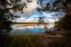 Moonee afternoon (orpheusomega) Tags: beach coast australia estuary nsw coffsharbour