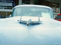 CWP_20160801_0010-4 (christopher wolf photography) Tags: car emblem hood ornament robins egg blue mamiya m645 1000s kodak ektar 100 montgomery mn