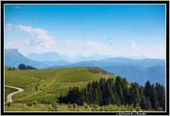 Sur les pentes du semnoz, On the slopes of semnoz (De Bretagne et d'ailleurs) Tags: alpage france hautesavoie massifdesbauges parapente canon5dmkii canon70200f4 montsemnoz montagnes