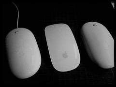 Muse (shortscale) Tags: apple mighty mouse magic maus