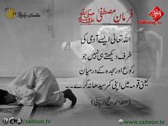 26-7-16) zaiby jwelers (zaitoon.tv) Tags: mohammad prophet islamic hadees hadith ahadees islam namaz quran nabi zikar