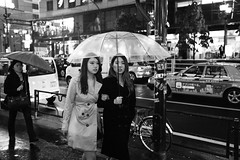 Roppongi, Tokyo (fabiolug) Tags: women woman girls girl umbrella umbrellas cars rain raining night roppongi people street streetphotography tokyo japan japanese asia leicammonochrom mmonochrom monochrom leicamonochrom leica leicam rangefinder blackandwhite blackwhite bw monochrome biancoenero 35mmsummicronasph 35mmf2summicronasph summicronm35mmf2asph summicron35mmf2asph 35mm summicron leicasummicron leica35mm