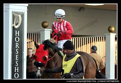 IMG_9582 (femalejockeys) Tags: femalejockeys turfway park female athletes horse racing horses thoroughbred kentucky derby