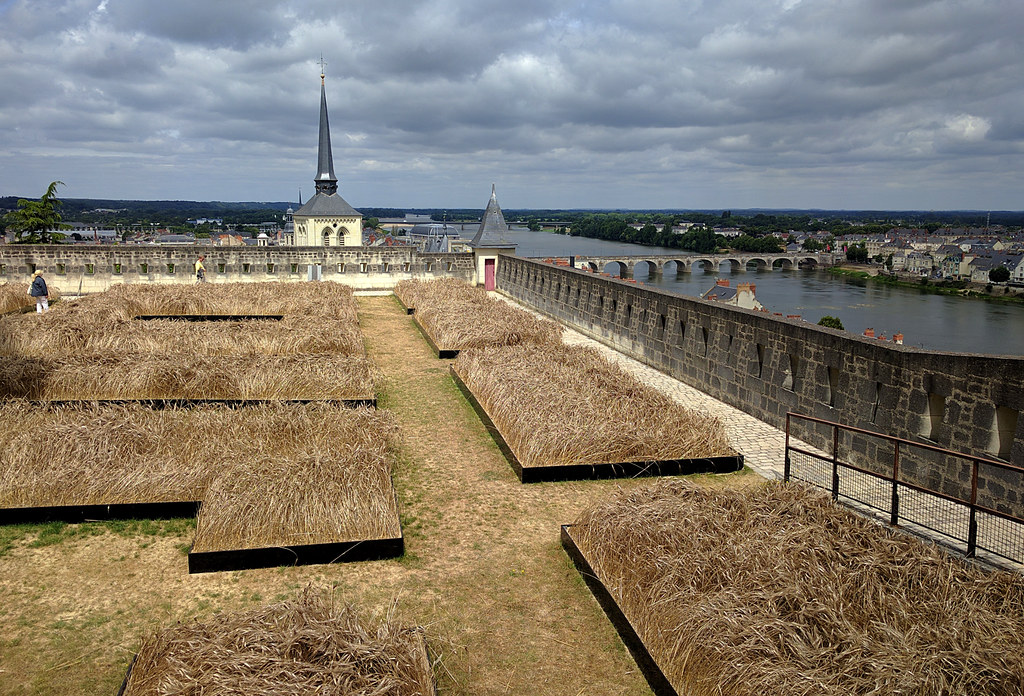 Chateau Saumur's unusual gardens overlooking the river