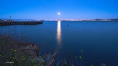 Moon star (davidyuweb) Tags: moon star moonstar full san francisco sanfranciscobay bay bridge light water reflection samyang sfist sony blue