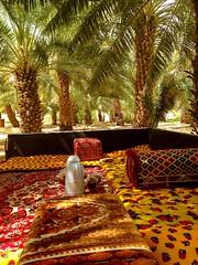 قهوة المزرعة (hamad1436r) Tags: نخل المزرعة استراحة قهوة جلسة نخيل