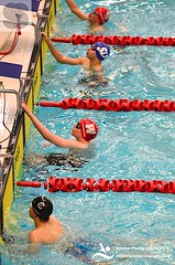 SNAGS 2015 03.04.15 PM (scottishswim) Tags: swimming scotland aberdeenshire scottish aberdeen age groups gbr snags2015