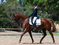 150314_Clarendon_4.1_9625.jpg (FranzVenhaus) Tags: horses sydney australia riding newsouthwales athletes aus equestrian supporters riders officials dressage spectatorsvolunteers