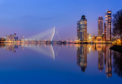 Lovely Rotterdam
