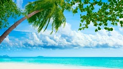 Best Tropical Beaches In The World Wallpaper Free 2015 (wallsauto) Tags: world wallpaper free best beaches tropical the in