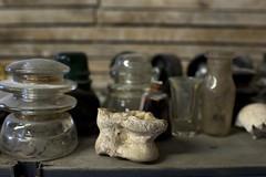 Bone (Beth Reynolds) Tags: glass studio artist bottles insulation shell shelf bone spine dust vertabra