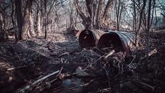 Drain (sheenphotos.com) Tags: trees lake river lost spring cool woods mud ottawa scene drain sewage loon cimera