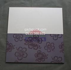 Gạch ốp tường hoa bằng lăng tím 1 (30x60)