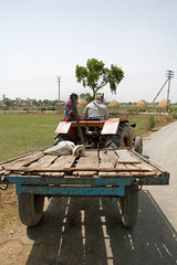 Back of a Cart Pulled by a Tractor (IFPRI-IMAGES) Tags: india plant tractor field season village married farm labor farming grow spouse soil health crop worker produce cart agriculture yield tow cultivation sustainable pulses farmequipment haul nutrition paved southasia manoli haryana smallfarm farmtool sonipat foodsecurity agriculturaldevelopment micronutrients ifpri