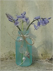 Vase mit Glockenblumen (h.bresser) Tags: vase glockenblumen stilllife stillleben hbresser hartmutbresser blau blue blumenvase blunen flowers