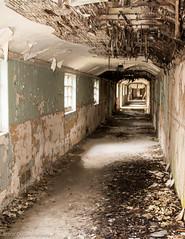 Endless corridors... (Dan Elms Photography) Tags: urban canon hospital urbanexploring mentalasylum urbex 24105l 70d 24105mml severalls danelms talldan76 danelmsphotography severalhospital