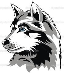 Wolf (brandmilaline) Tags: animal beast carnivorous face feeding flesh head hunter illustration mammal outline predator wild wolf dog