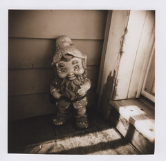 Garden gnome, Corvallis 2016 (Sara J. Lynch) Tags: sara j lynch garden gnome corvallis oregon willamette valley statue figure black white holga 120n film