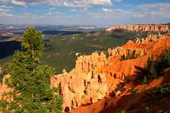 IMG_7874_5_6 (hhwilhelm) Tags: usa america utah us unitedstates unitedstatesofamerica northamerica brycecanyon brycecanyonnationalpark