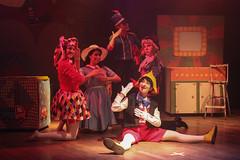 00_IMG_5993 (relevamientodeimagenes) Tags: teatromunicipal pinocho salamarechal santafeciudad secretariadecultura santafe cultura teatro escenario nios vacaciones
