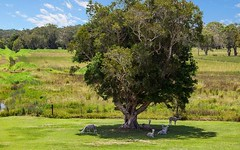 3489 Pacific Highway, Tyagarah NSW