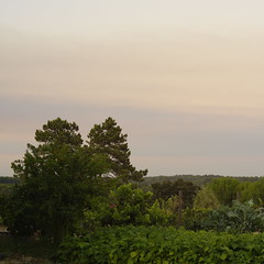 Sunset (Capturedbyhunter) Tags: fernando caador marques fajarda coruche agolada ribatejo santarm portugal pentax k1 revuenon 112 55mm mc sunset landscape paisagem pr do sol outdoor