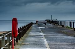 Just A Short Walk!! (BGDL) Tags: lightroomcc afsnikkor55200mm1456g bgdl seascape nikond7000 ayr pier walkingthedog lady dog buoy firthofclyde allscapes weeklytheme flickrlounge