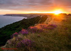Stonebarrow Sunset (TDR Photographic) Tags: charmouth dorset dorsetcoastpath england thedorsetrambler uk coast contrejour evening landscape light possibles sea sunset walking