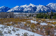 DSC00536--Jackson Hole Valley, Wyoming (Lance & Cromwell back from a Road Trip) Tags: grandtetons nationalpark roadtrip 2016