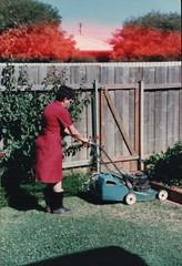 Scott Bonnar Lawn Mower (RS 1990) Tags: 1980s scottbonnar lawn mower australia circa1986 retro nostalgia photo scan throwback flashback rewind blastfromthepast