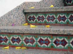 (Shahrazad26) Tags: agadir marokko morocco maroc stairs trap marmer marble mozaiek zellig zellij
