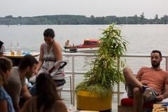 NKRS5776 (pristan25maj) Tags: green pristan pristan25maj brodovi boats reka river dunav danube photonemanjaknezevic nkrs