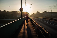 365/365 Into the Sun (ewitsoe) Tags: 365 ewitsoe bridge poznan street end bike sky dawn sunrsie nikond80 35mm ostrowtumski urban lady ridingbike morning mybirthday summwer sunrise sun sunny beautiful cityscape city life woman polska