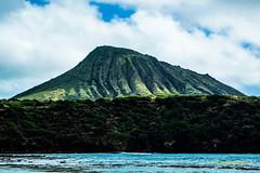 Hanauma Bay 5a_DSC0660 (32Groove) Tags: hanaumabay landscapesofoahu oahu
