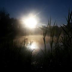 sunrise (Darek Drapala) Tags: sun sunshine fogg water lumix light panasonic poland polska panasonicg5 legnica reflection reflects