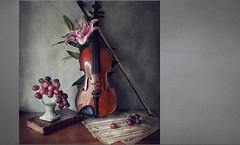 Para Ana... (pimontes) Tags: still flor violin bodegón libros música uvas músic hss partitura pimontes